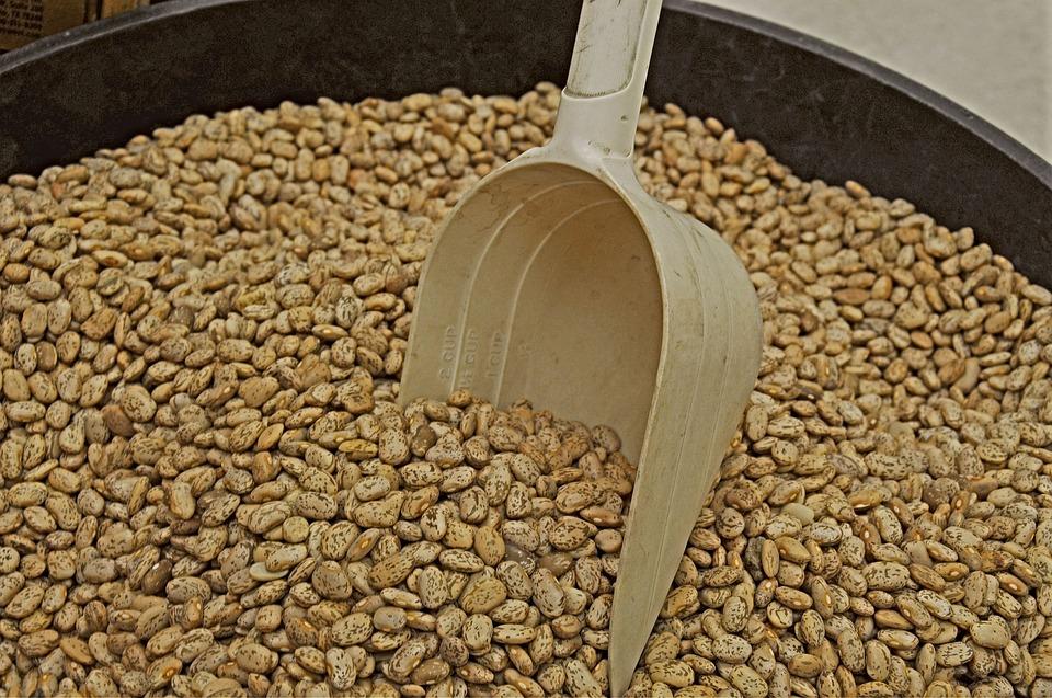 lopatka s fazolemi